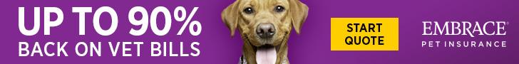 Up to 90% back on Vet Bills - Embrace Pet Insurance
